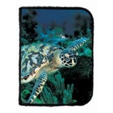 Logboek schildpad