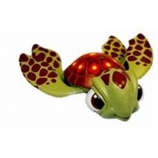 Rainbow reef turtle